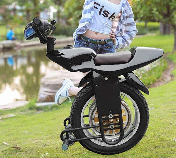 lectrique-monocycle-scooter-une-roue-lectrique-Monocycle-1000-W-60-V.jpg