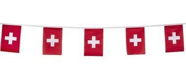 suisse.jpg.b8f9648a2c7b12d256ec1c4ce1cdb292.jpg