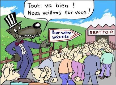 bickel-moutons-loup.jpg.c008b1f4baab809943481a27f8b50224.jpg