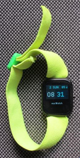 Watch-bracelet.JPG.2258d4eb385c346dc0499d01a760efc5.JPG
