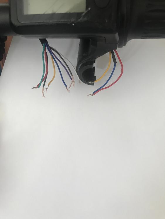 D1EC36E3-CC17-49AA-BEA7-180D0F3D2A43.jpeg